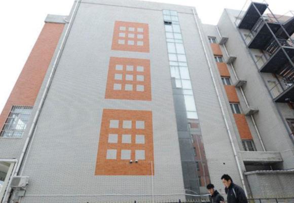 长春居民楼外墙现仿真窗户