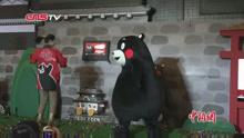 """萌翻了!和""""熊本熊""""来个0距离接触吧!"""