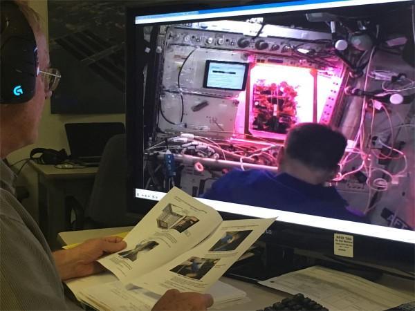生菜已成为国际空间站的重要食材
