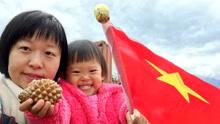 新西兰地震后中国领事馆救援表现让世界称赞