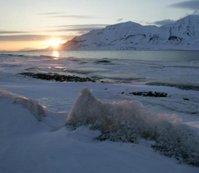 北极海冰面积再创新低