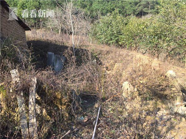 武汉老人烧了自家房子 隐居古墓32年