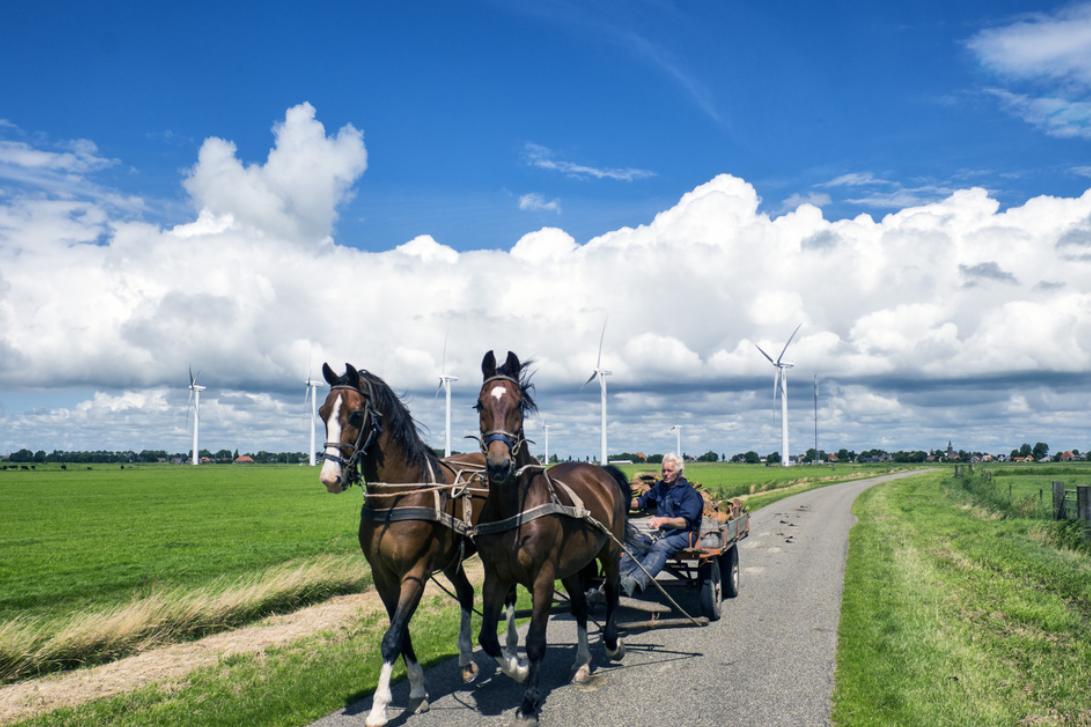 荷兰小镇风光 碧水蓝天旅游休闲好去处