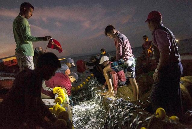 委内瑞拉渔民因经济危机被迫当海盗