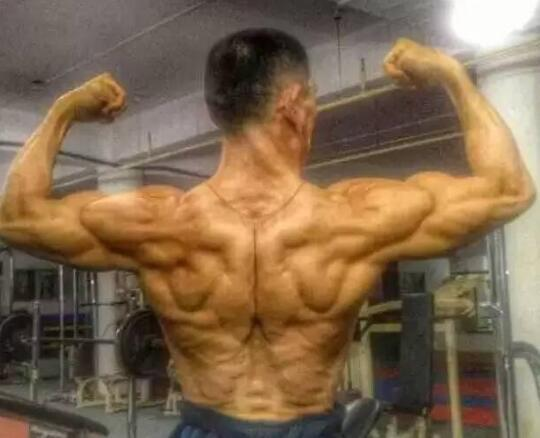 想长肌肉长不了,那么请问你知道增肌的原理吗?