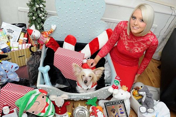 壕!英国一居民圣诞节为爱犬花费数万元