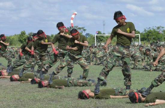 解放军在柬埔寨举行联合军演