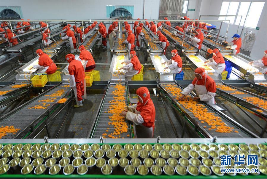 """""""中国脐橙之乡""""拓宽脐橙深加工产业链"""