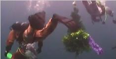俄罗斯潜水爱好者办水下派对迎新年