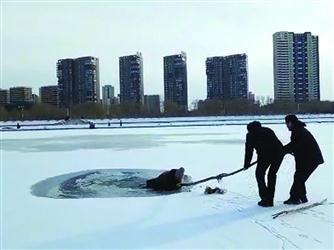 沈阳一男子冰上过浑河落水 路人一根木棍救回