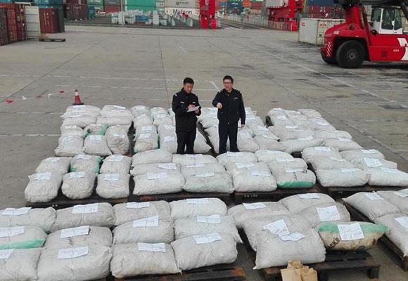 上海查获国内最大一起穿山甲鳞片走私案