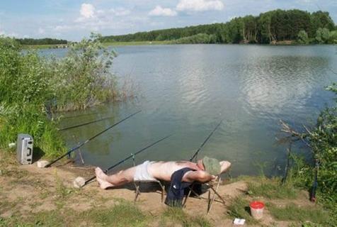看到你们这样钓鱼,鱼就放心了