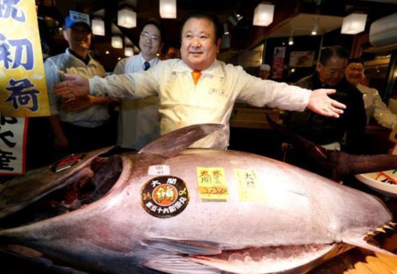 日本水产市场开市 巨型金枪鱼7400万日元成交