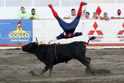哥斯达黎加举办传统斗牛赛 斗牛士被顶飞