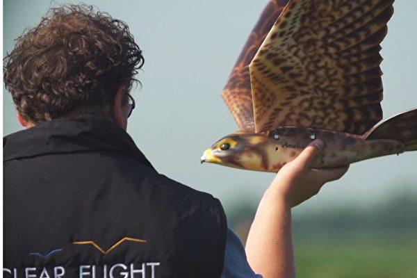 荷兰推仿真猛禽无人机 扑打翅膀驱赶鸟群