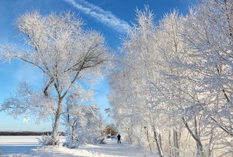 俄罗斯强降雪 小镇呈现雾凇美景