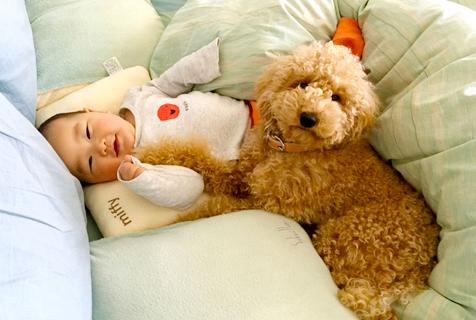 """日本萌娃与贵宾犬""""兄弟之爱""""暖化了"""