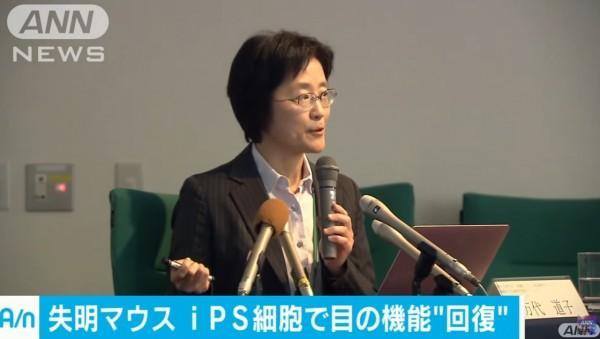 史上首次:日本确认iPS视细胞能让眼睛恢复感光