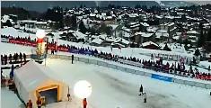 奔跑!法国狗拉雪橇大赛开幕