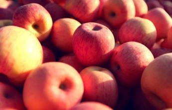 苹果延寿益智抗抑郁 三种人不宜多吃!