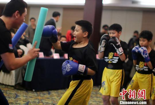 WBF中国区启动 注册职业拳手135人