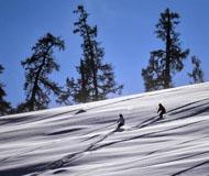 新疆阿尔泰山野雪公园开滑 大批雪友慕野雪而来