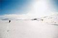 冬季滑雪小心雪盲症