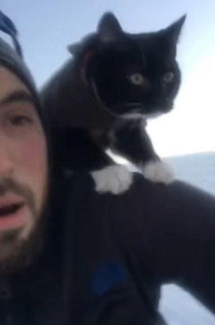 美男子带爱猫滑雪吓坏喵星人