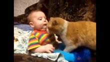 霸气猫咪推小主人去睡觉