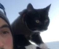 美国男子带爱猫滑雪吓坏喵星人