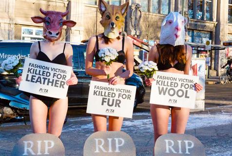 德国女性裸身抗议时装周使用动物皮毛
