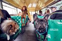 首班狗狗观光巴士在伦敦开通