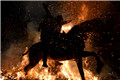 """西班牙圣安东尼节 民众""""骑马跳火""""如战争片"""