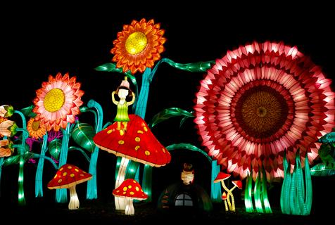 伦敦街头张灯结彩 迎春节气氛浓厚