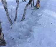 北大女研究生滑雪时意外受伤 抢救无效身亡