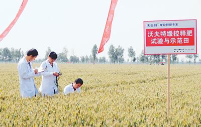 """高效复合肥料联盟成立 协作破解农业""""减肥""""难题"""