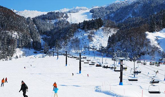 富山县山区普降大雪 富山滑雪场迎来本雪季最好的天然雪资源