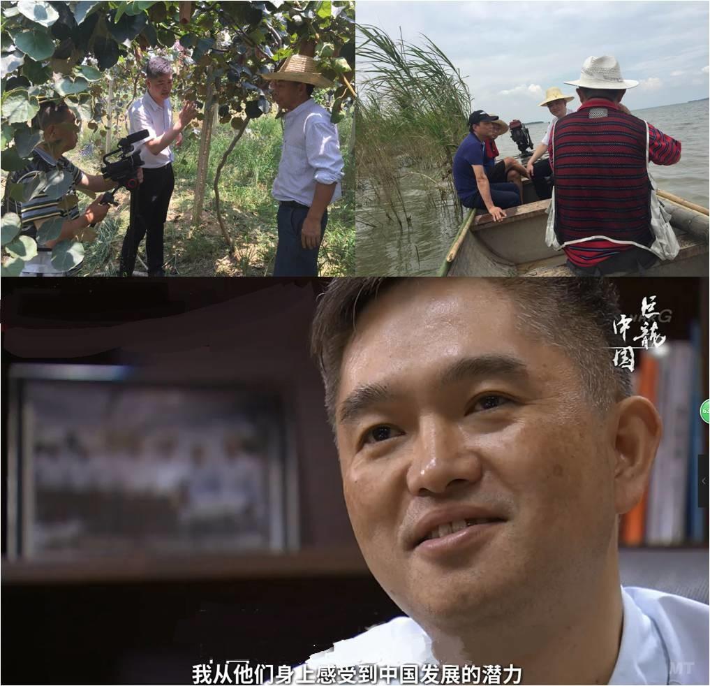 【万万没想到】与BBC齐名的日本NHK拍了部记录片,主角居然是他?