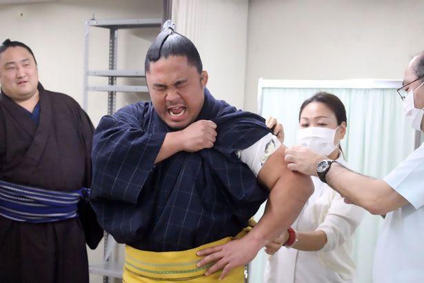 日本相扑选手注射疫苗时表情痛苦难掩哭泣