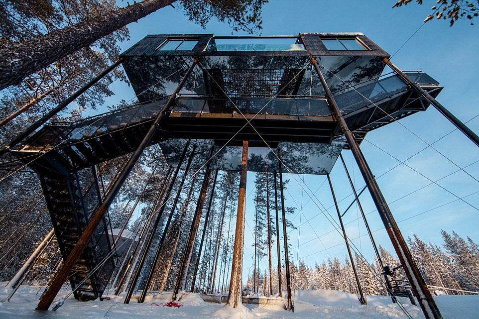 瑞典豪华树上旅馆对外开放 具有完美隐蔽性