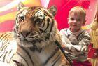 俄家庭养10只老虎当宠物