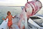 小兄妹跟父亲出海捕鲨鱼
