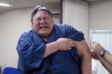 相扑选手注射疫苗时表情痛苦