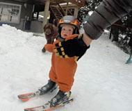 厉害了宝宝!加拿大1岁男童刚会走就能滑雪