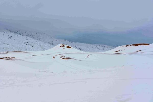 美呆!暴风雪后撒哈拉沙漠局部积雪厚达1米