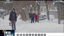 欧洲多国遭受寒潮侵袭