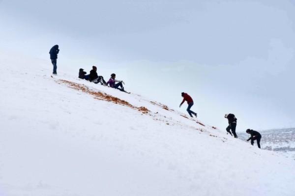 撒哈拉沙漠罕见暴雪:部分地区积雪深1米