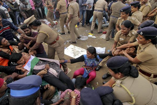 印度民众要求恢复传统驯牛活动引发骚乱 与警察激烈冲突