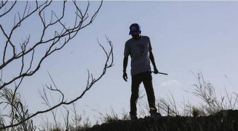 印度两部落男子成美国佛州捕蛇能手为当地除蟒害