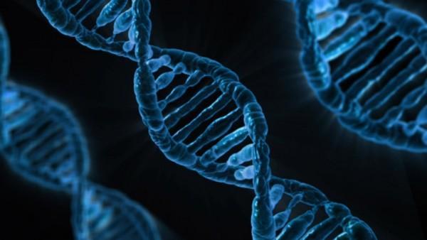 《自然》盘点基因剪刀五大谜题:它是谁?